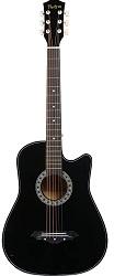 Photron Acoustic Guitar